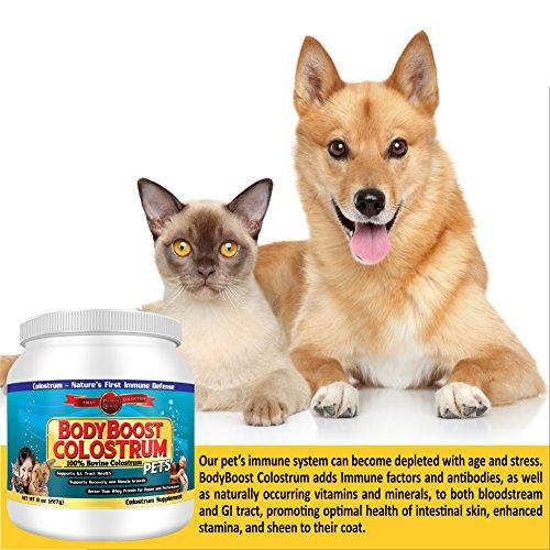 Colostrum Powder 8 oz. Pet, 100% Whole 1st Milking