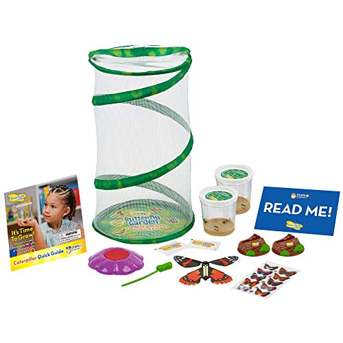 Insect Lore Mini Butterfly Garden Gift Set Two Live Cups of Caterpillars – Life Science & STEM Education