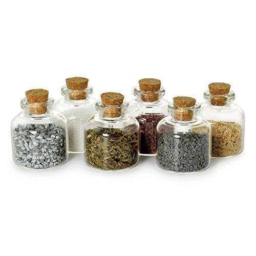 Ganzoo Mini-Fläschchen Glas + Korken, Dekoration, Spund-Flasche, Basteln, 20ml 6er Set