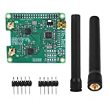 Eboxer USB MMDVM Modulo dell'unità di espansione Hotspot duplex Kit Set parti con doppia antenna per DMR/P-25 / D-Star Alta potenza Fino a 10 mW RF