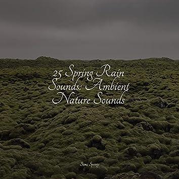 25 Spring Rain Sounds: Ambient Nature Sounds