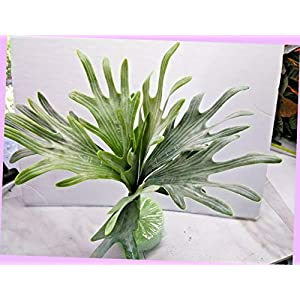 Artificial 14″ Artificial Staghorn Fern Silk Floral Flowers Bouquet Realistic Flower Arrangements Craft Art Decor Plant for Party Home Wedding Decoration