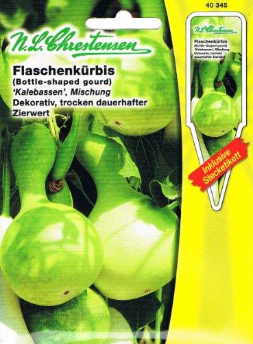Flaschenkürbis Kalebassen Mischung dekorativ, trocken dauerhafter Zierwert ' Lagenaria siceraria'