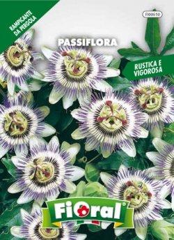 Sementi da fiore di qualità in bustina per uso amatoriale (PASSIFLORA)