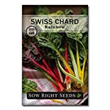 Sow Right Seeds - Rainbow Swiss Chard Seed for Planting - Non-GMO Heirloom Packet with Instructions to Plant a Home Vegetable Garden - Great Gardening Gift (1)