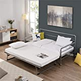 Daybed with Pop Up Trundle, Twin Metal Sofa Bed with Adjustable Trundle Steel Slat Support, Heavy-Duty Steel Daybed for Bedroom Guest Room (Silver)