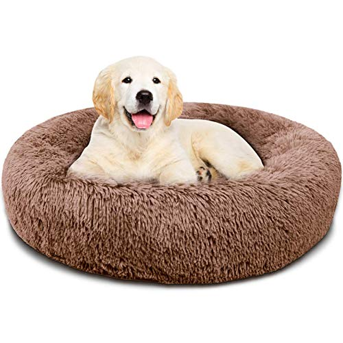 Covacure Dog Bed for Small Dogs - Comfortable Small Round Dog Bed & Ultra Soft Washable Calming Dog Bed and Cats