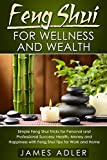 Best Feng Shui Books - Feng Shui for Wellness and Wealth: Simple Feng Review
