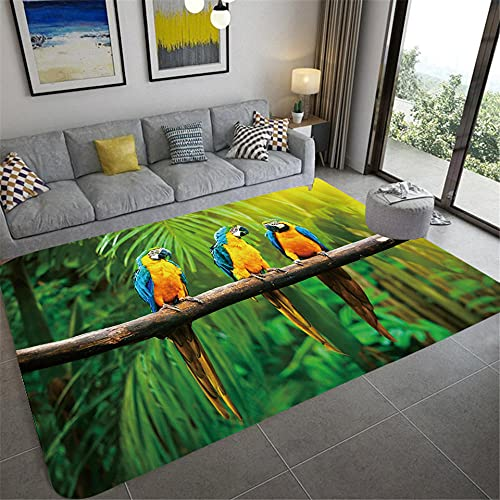 IOWLDMW Alfombra Salón Grande Pelo Corto Loro Animal Verde Azul Amarillo Selva Alfombra Moderna para Sala de Estar Alfombras de Salón de Diseño Moderno para Salón Dormitorio 60 x 90 cm