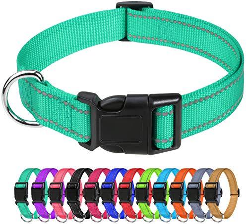 TagME Collar Perro Ajustable,Collar Nylon Reflectante,para Caminar Correr Entrenamiento,para Perros Pequeños,Turquesa,1.5cm De Ancho