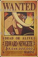 海賊アニメEDWARD Newgete さびた錫のサインヴィンテージアルミニウムプラークアートポスター装飾面白い鉄の絵の個性安全標識警告バースクールカフェガレージの寝室に適しています