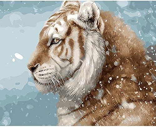CZYYOU DIY maßen Nach Zahlen maßen Nach Zahlen Für Wohnkultur Bild  em e Für Wohnzimmer Tiger Im Schnee, Mit Rahmen, 50x6cm