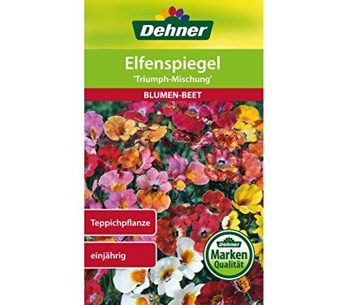 Dehner Blumen-Saatgut, Elfenspiegel