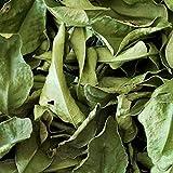 Natural Dried Organic Kaffir Lime Leaves (1 oz) from TastePadThai