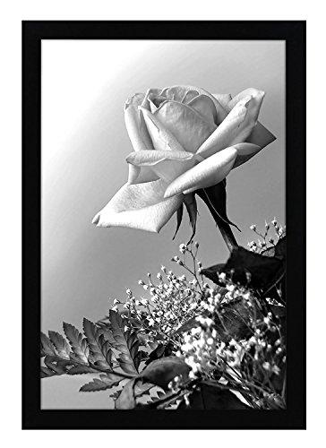 Americanflat 12x18 Poster Frame in Black with Polished Plexiglass - Horizontal and Vertical Formats with Included Hanging Hardware