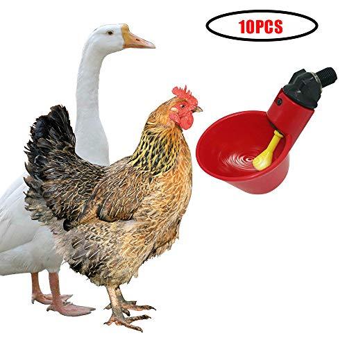 GCSEY Vasos para Beber De Pollo De Bebederos para Pollos Beber Rojo Pollo De Las Codornices Waterer Tazón Automática Aves Coop Alimentador De Agua Y Tazas De 10Pcs