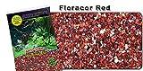 Nature's Ocean Aquarium Sand - Activ-Flora Planted Substrate Flora-CORE RED,...