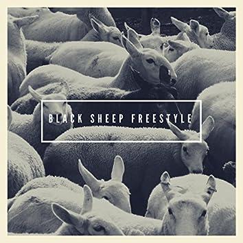Black Sheep Freestyle