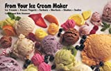 From Your Ice Cream Maker: Ice Creams, Frozen Yogurts, Sorbets, Sherbets, Shakes, Sodas (Nitty Gritty...