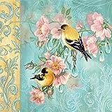 20 servilletas con diseño de pareja de pájaros en adornos como decoración de mesa y para manualidades con servilletas, 33 x 33 cm