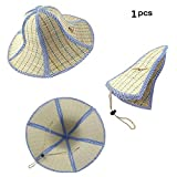 Feisuo 1 Pcs Summer Beach Boater Straw Hat,Chinese Style Foldable Straw Sun Cap Visor Hat for Mens...