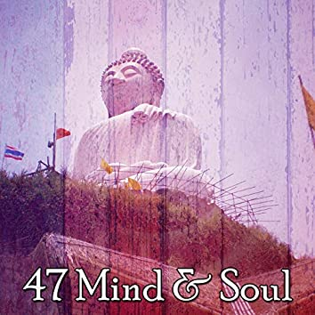 47 Mind & Soul