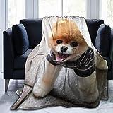 Coperta in pile per la casa, 127 x 152,4 cm – Pomerania Spitz cucciolo museruola in flanella morbida e calda coperta per letto/divano/ufficio/campeggio