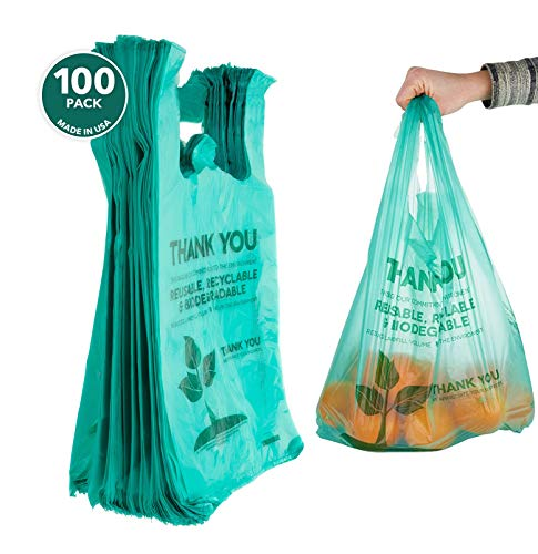Stock Your Home Eco Friendly 1/6 T-Shirt Bags (100 Count) Biodegradable Plastic Grocery Bags - Reusable Supermarket Thank You Shopping Bags, Recyclable Plastic T Shirt Bags, Small Trash Can Bags