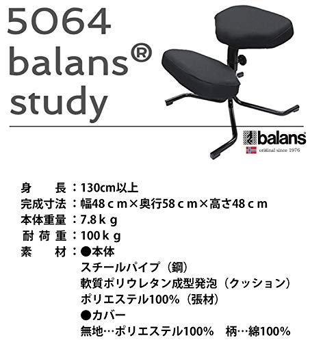 國新産業バランスチェア5064バランススタディ幅48×58×48cmブラック姿勢サポート高さ調節可能