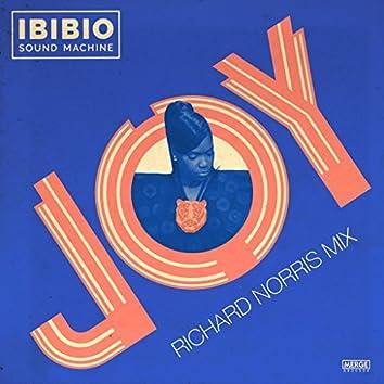 Joy - Richard Norris Mix