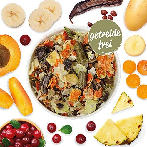 Schecker Veggie Mix mit Gemüse und Früchten (GFK-Mix) Optimale Barf - Ergänzung, oder zum Strecken von Nassfutter und Trockenfutter