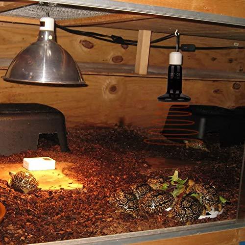 POFET Lámparas térmicas para terrarios