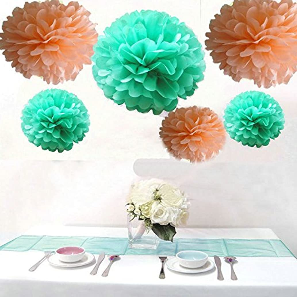 Krismile? Pack of 12PCS Mixed Sizes Peach Mint Green Party Tissue Pom Poms Wedding Birthday Party Girls Room Decoration