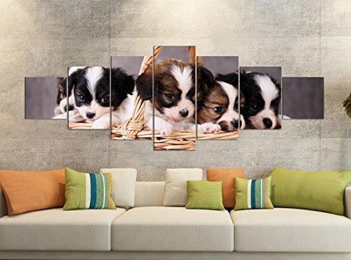 Canvasfoto's 7 delig 280x100cm puppy puppy hond dier honden mand lief canvas foto delen delen kunstdruk druk vlies muurschildering meerdelig 9YB1521