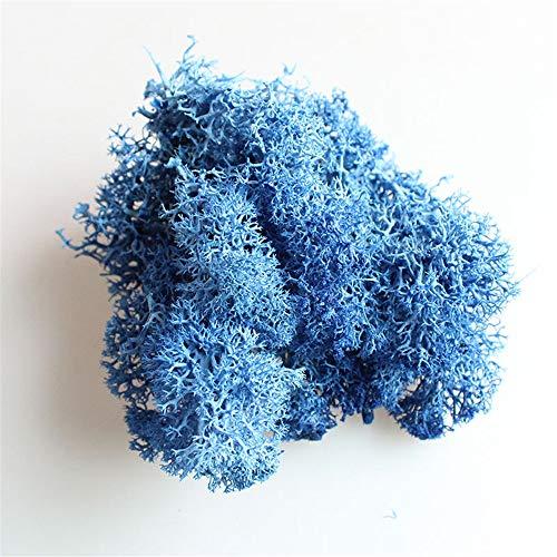 Hunt Gold Musgo preservado, liquen de los renos noruego natural preservado desecado para decoración y arreglos florales, 10 g, azul oscuro, talla única