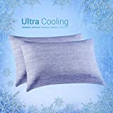 Elegear Cooling Pillowcases for Night Sweats and Hot Flashes, Japanese Q-Max 0.4 Cooling Fiber, Breathable Soft Both Sides Pillow Case with Hidden Zipper, Set of 2, Blue (Queen (20'' x 30''))