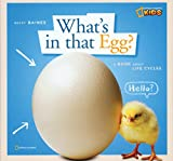 E is for egg preschool lesson
