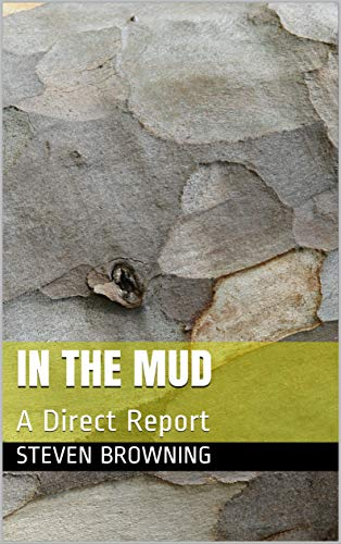 In The Mud: A Direct Report (English Edition)
