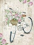 DIY Digital Painting Rahmenlose Acrylfarbe Handgemalte Ölgemälde Kit Fahrrad Blumenkorb DIY Leinwand Dekoration Geschenk 30 * 40cm