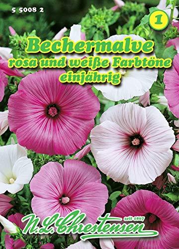 Lavatera trimestris, Bechermalve rosa / weiß N.L.Chrestensen Samen 550082-B