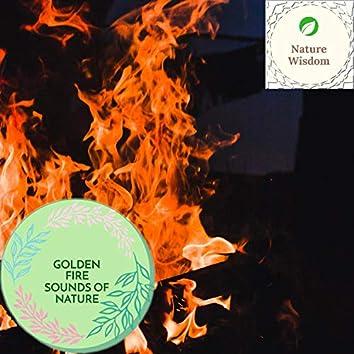 Golden Fire Sounds of Nature