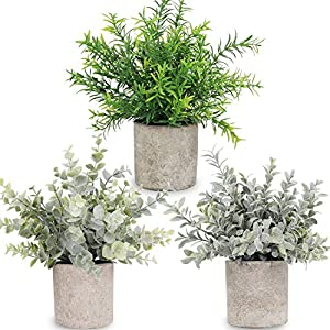 C APPOK Artificial Potted Plants Fake Eucalyptus Plant – 3 Pack Mini Faux Plants – Small Plastic Green Grass with Pot, Faux Green Rosemary Plants for Home Decor, Indoor, Table Decoration