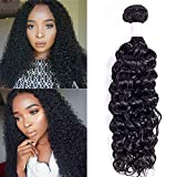 Brazilian Virgin Curly Hair 1 Bundle Deal 100g (20 Inch) 9A Unprocessed Brazilian Kinky Curly Human Hair Weave Can be Dyed and Bleached