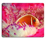 Fish Sea Anemone Color Colorful Underwater Mouse Pads Customized Made to Order Support Ready 9 7/8 Inch (250mm) X 7 7/8 Inch (200mm) X 1/16 Inch (2mm) Eco Friendly Cloth with Neoprene Rubber Liil Mouse Pad Desktop Mousepad Laptop Mousepads Comfortable Computer Mouse Mat Cute Gaming Mouse pad