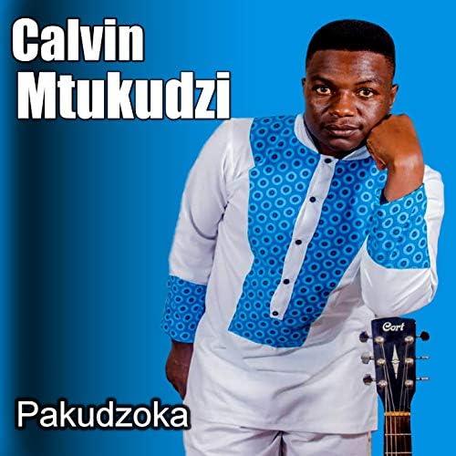Calvin Mtukudzi