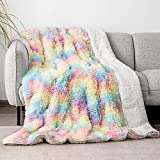 Faux Fur Weighted Blanket 15lbs for Adult 48x72 Inches, Cottonblue Plush Shaggy Fluffy Throw Blanket Queen Size, Cozy Warm Furry Weighted Blanket for Couch Sofa Chair Home Decor, Rainbow