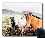 Yanteng Alfombrillas de ráton del Caballo, Caballos de la Granja de Animales, Estera del ratón del Caballo