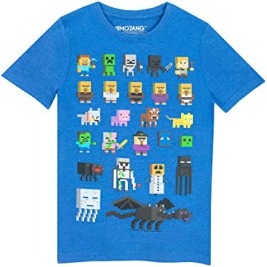 Minecraft Boys Minecraft Short Sleeved T shirt 12 13 Years Blue product image