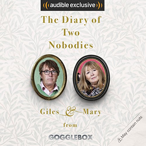 The Diary of Two Nobodies cover art
