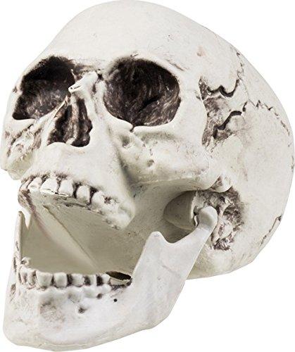 Décoration squelette 24 x 18 cm Halloween - taille - Taille Unique - 228368